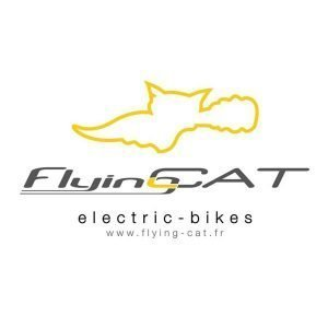Flying Cat Bikes